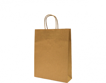 Shopping/Retail Bags with Twisted Paper Handles (Small)